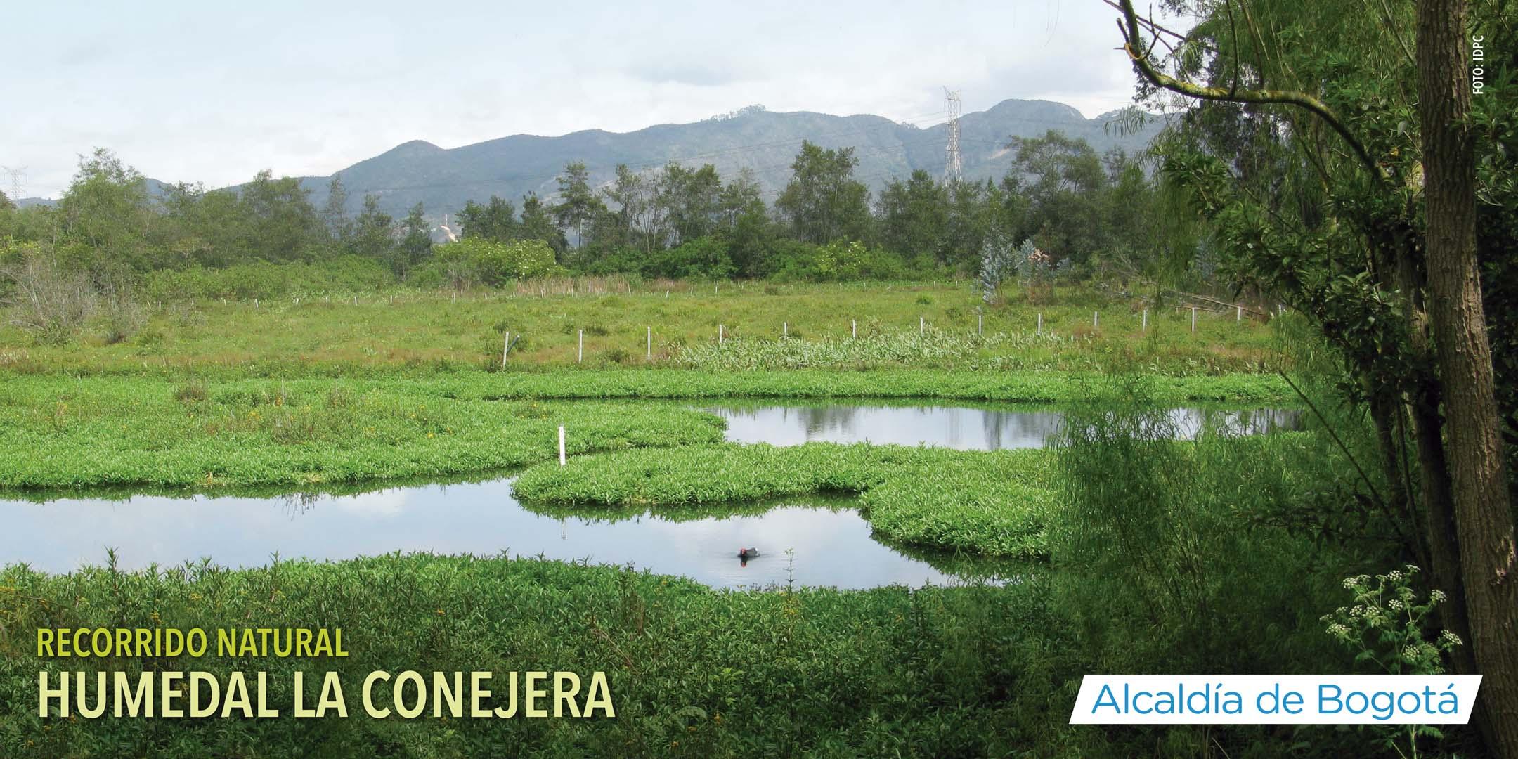 Recorrido humedal la Conejera 30 de marzo 2019