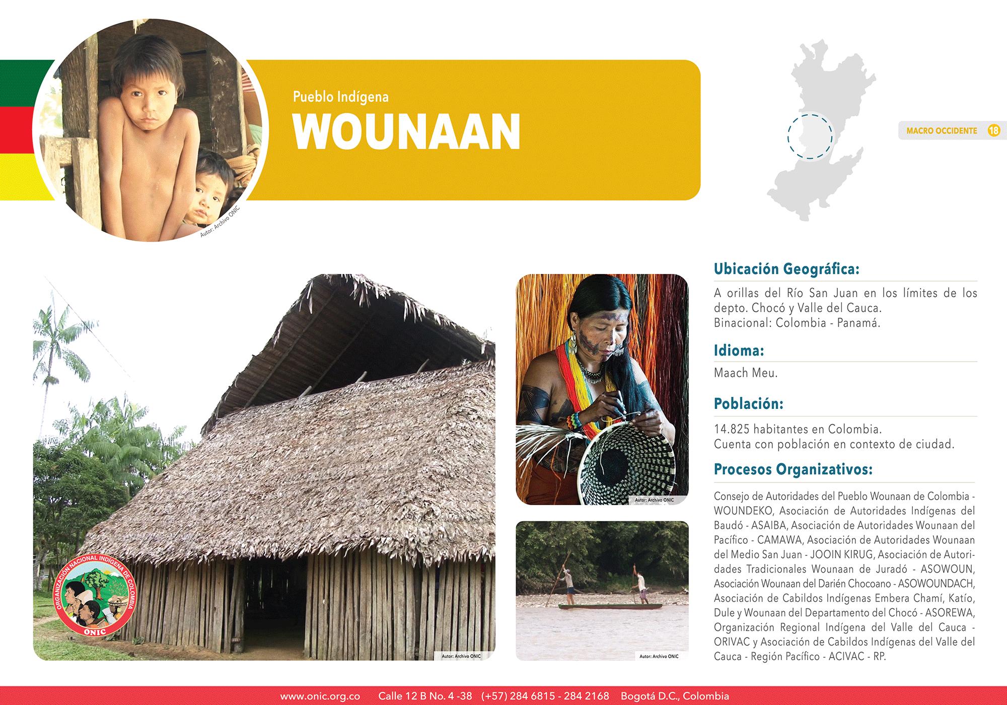 18-WOUNAAN-FichaDigital-PueblosIndígenas-ONIC-01
