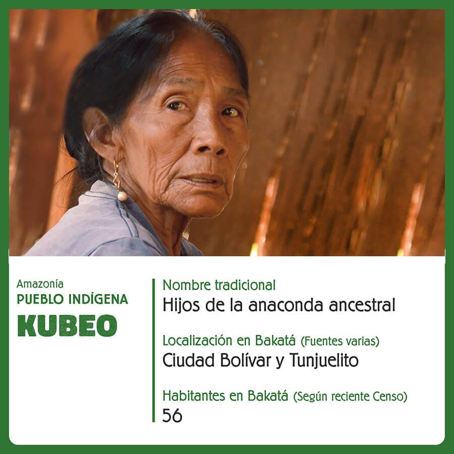 Pueblo Indigena Kubeo