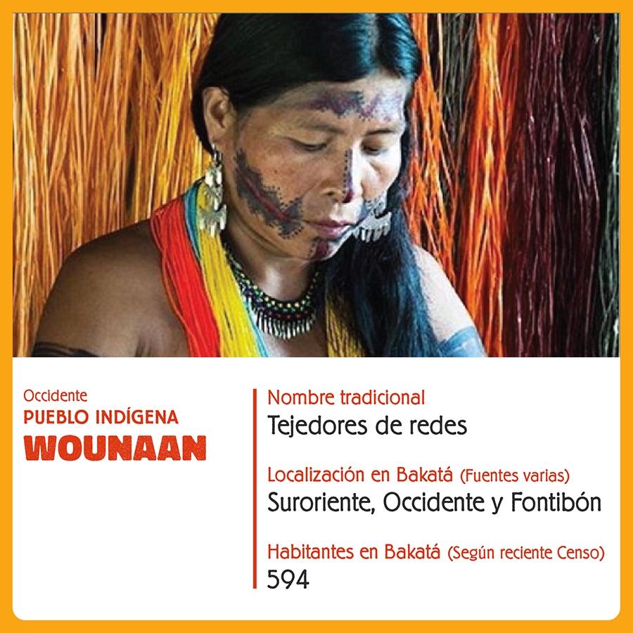 Imagen del Pueblo Indígena Wounaan