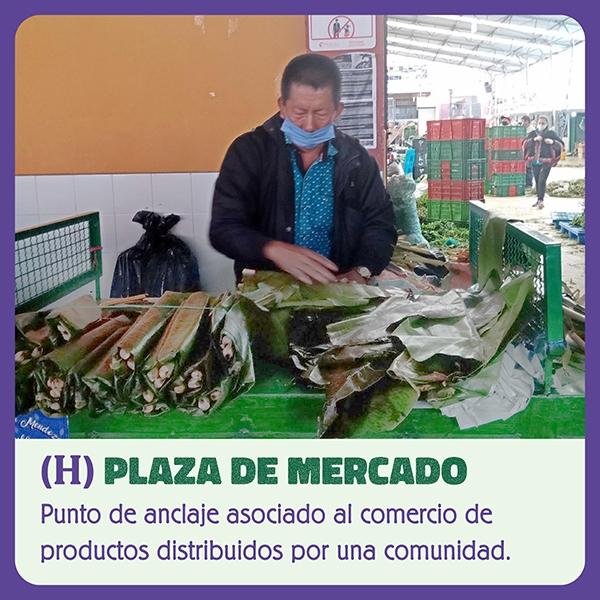 Plaza de Mercado