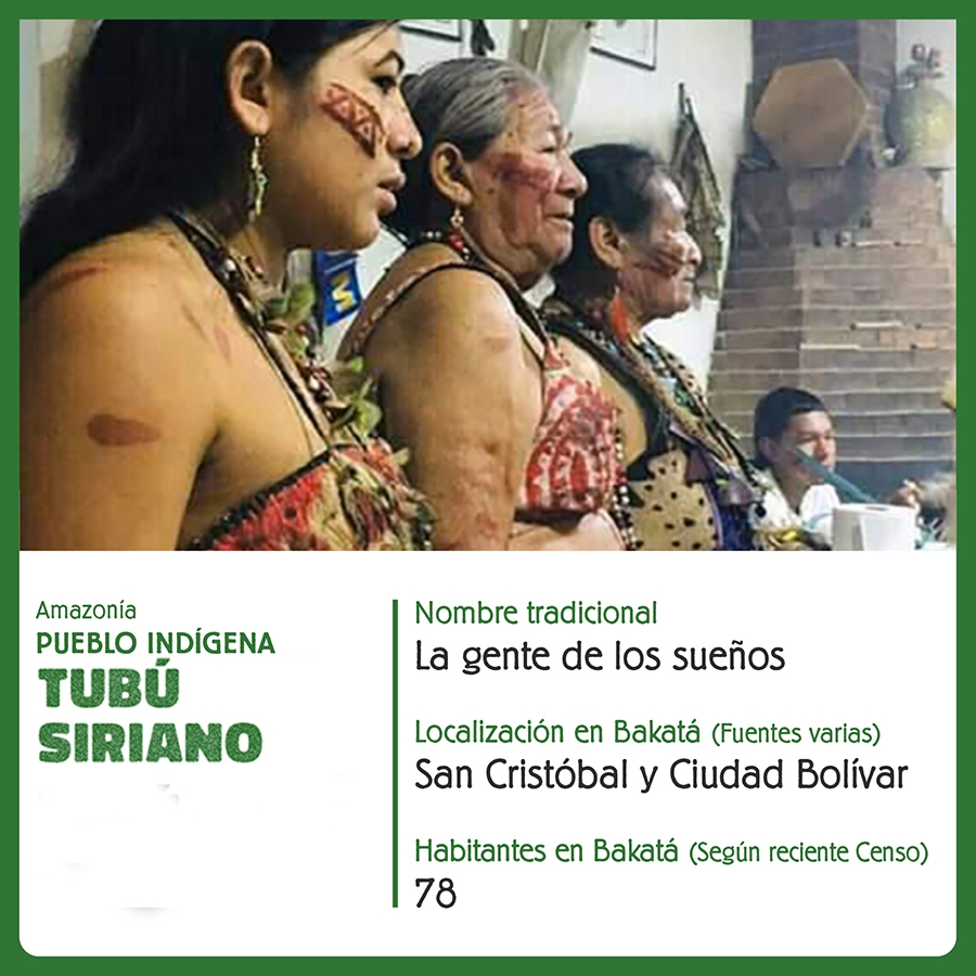 Pueblo Indígena Tubú