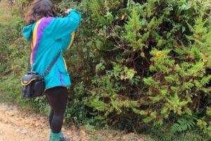 Imagen de mujer fotografiando la naturaleza para ilustrar un Recorrido por la Quebrada La Fucha en Bogotá Rural